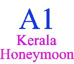 Honeymoon Packages for Kerala / We deal in honeymoon package. we provide Luxury and best honeymoon packages for Kerala. We have honeymoon packages for Kerala from Mumbai, Pune, Bangalore, Hyderabad and Ahmedabad. We have educated and experience  staff to provide honeymoon package for Kerala. The most famous honeymoon Package for Kerala is 5 night and 6 days package. We provide safe and secure package for Kerala. We provide best possible services during traveling.