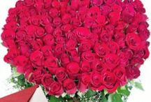 Flowers Delivery Online In Abohar