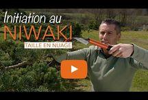 NIWAKI L'art du Nuage