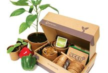 Seed Pantry Seed Kits / Super stylish grow your own vegetable starter packs for all the family.