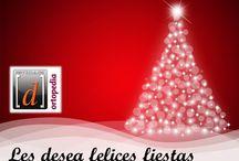 Felices Fiestas ! / Fiestas de Navidad