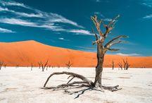Auf Fotosafari in Afrika