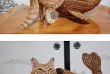 Αστείες γάτες