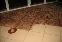 Concrete Floor Ideas / by Christie Eliason