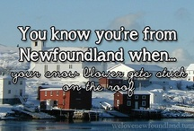 Newfoundland the place I comes from!