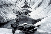Martial arts / by Robert Pope