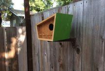 domki dla ptaków + inne