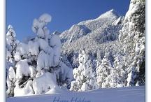 Colorado Winter Scenes / Colorado Winter