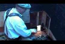 Wood rot repair by Westbrook Restorations Seattle