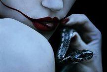 Le serment du serpent