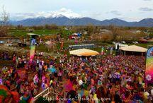 Festival of Colors in USA / Festival of color / colours in Spanish Fork, Utah, USA