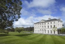 Photographs of Farnham Estate / Photographs taken of Farnham Estate in all its glory back in August 2013