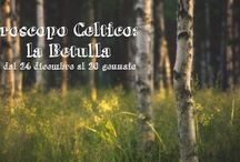 celtic world and curiosities