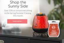 Scentsy Candles Specials / Discontinued  Candle Warmers, join Specials, Monthly Specials, All Scents