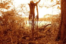 Scarecrows / Scarecrows creep a lot of people out, and the variations are innumerable!  Some I keep here for inspiration. / by Jim T