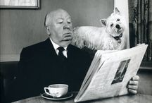 Equal Opportunity - Dogs Read too / oh and Ponies. And chooks. And glassware.  / by Fullers Bookshop