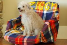 dog beds / a nice place to sleep for your furry companions