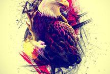 Panturilha Águia