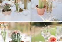 65+ Beautiful Eye-Popping Succulent Photos For Wedding Ideas / Our collection with more than 70 free beautiful succulent will bring you great inspiration to create these beautiful things on your big day. Read more: https://www.designmaz.net/eye-popping-succulent-photos-for-wedding-ideas/