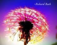 Abundance / Metaphysics / Mystery / Spiritual