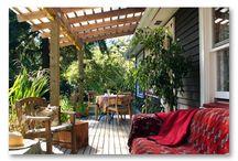 backyard shade / by Alice Medley