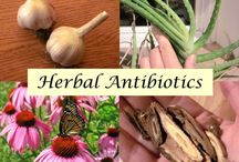 Natures RX / Healthy healing and body maintenance