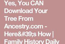 Family tree how to