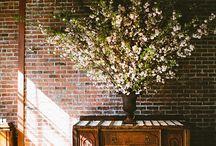 Home Decor / My house ideas! / by Colorado Aisle Weddings & Events