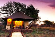 Must See South African Safaris / Head over to www.betterlateluxury.com to become a member for free and see what great deals we have on offer.