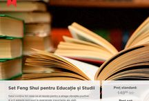 Feng shui educație și studii