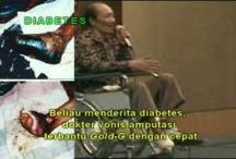 Obat Alami Penyembuh Diabetes Melitus