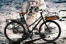 rower złote myśli