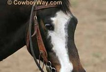 How To / How-to articles for horse lovers and cowboys! We have everything from how to wrap a saddle horn, saddle a horse, tie a wild rag, tie a quick release knot, and so much more!