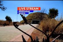 live stream now important news