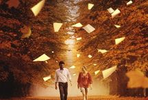 Infinite Choices - Films