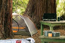 CAMPING / by Donna J. Jackson
