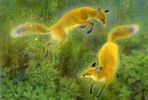 Fox / キツネ