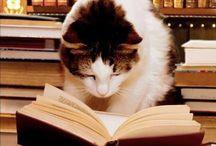 Reading Et Al