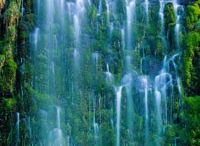 Waterfalls / by Donna Beebe