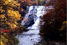 What we love about Upstate NY
