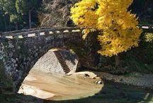 cuore ponte