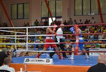 Grand Prix Usti Nad Labem-International Boxing Tournament 2017, (Czech Republic) 25/30 July 2017
