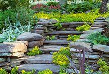 Backyard Envy / Ideas for our new backyard / by Cori Bueza Plinski