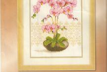 Keresztszemes minták (orchidea)