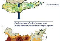 ECO-RUTAS / Rutas ambientales interpretadas por nuestros expertos.