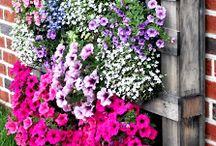Blumenkästen aus Paletten