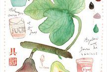 Food Illustration / by Emie