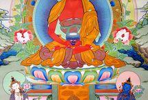 Dhyani Buddhák mandalája