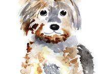 Yorkshire chien