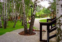 OGRODY KIELCE.4. PROJEKTOWANIE OGRODÓW KIELCE. gardening/landscaping. / OGRODY KIELCE. PROJEKTOWANIE OGRODÓW KIELCE. GreenPoint Ogrody Kielce.